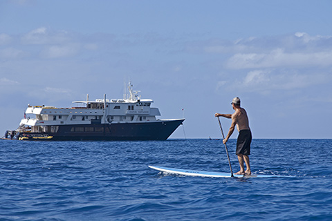 Man using Stand Up Paddle Board