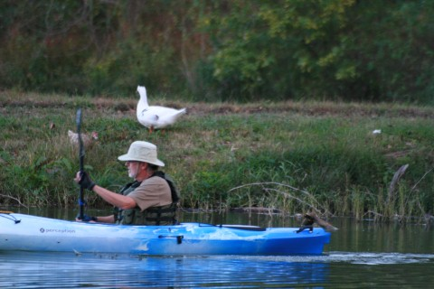 fishing kayaks if you're on a budget